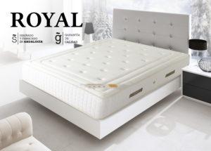 Suitex_Royal1
